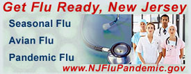 Pandemic Flu website Link