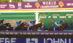 Photo of the Breeders Cup at Monmouth Park