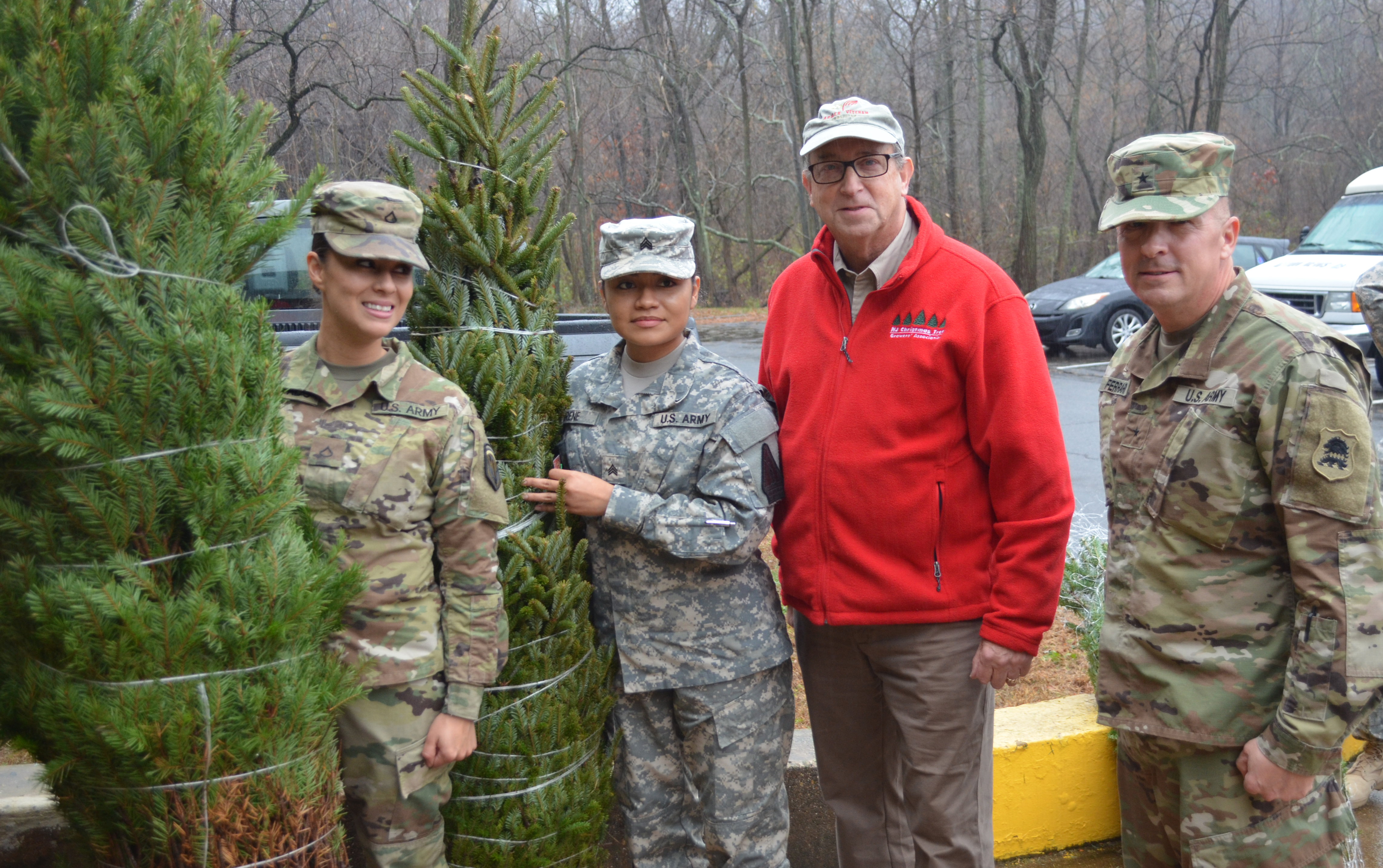 Christmas Tree Donation Day  - Click to enlarge