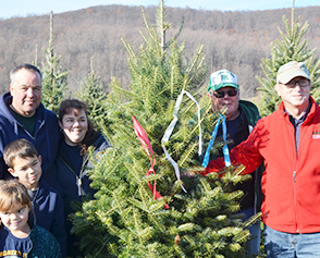 Christmas Tree Cutting - Click to enlarge