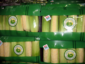 Photo of Jersey Fresh sweet corn