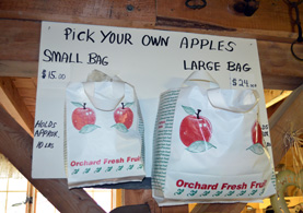 Photo of a Pick Your Own Apples sign - Click to enlarge