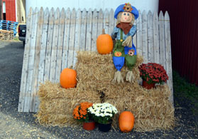 Photo of fall display - Click to enlarge