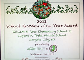Photo of the School Garden of the Year Award - Click to enlarge