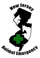 Image of Animal Emergency Green Cross logo - Click to enlarge
