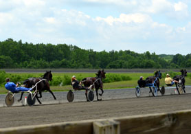 Photo of harness-racing practice - Click to enlarge