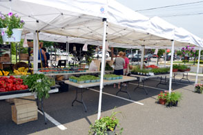 Photo of the Hasbrouck Heights Farmers Market - Click to enlarge