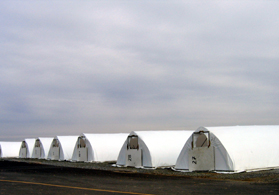 Photo of hoop houses with plastic - Click to enlarge