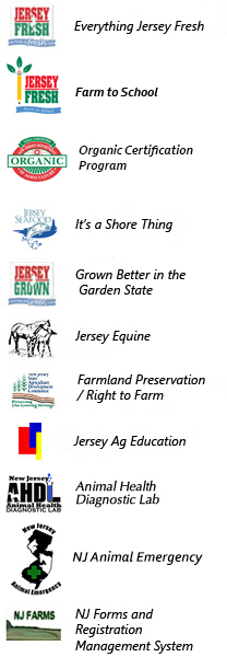 Nj Teaching Certification Requirements For Alternate Route