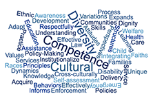 Graphic: Word Cloud related to Cultural Competency